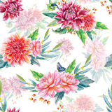 Seamless pattern with red dahlia. Stock Photography