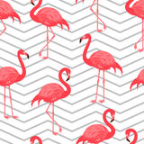 Seamless pattern with red flamingo. Stock Photo