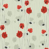 Seamless pattern of red flowers of poppies on a green background. Watercolor. Seamless pattern of wild red flowers of poppies on a green background. Watercolor Stock Image