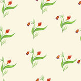 Seamless pattern with red flowers. On a stalk Stock Photos