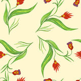 Seamless pattern with red flowers. On a stalk Stock Photography