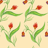 Seamless pattern with red flowers. On a stalk Stock Image