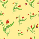 Seamless pattern with red flowers. On a stalk Royalty Free Stock Photography