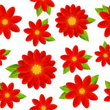 Seamless pattern with red flowers. On white Stock Images