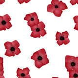 Seamless pattern red flowers white background Royalty Free Stock Photos