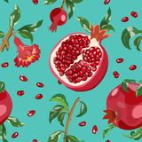 Seamless pattern with red garnets and leaves. Vector illustration. Pattern with flowers, branches with leaves and ripe pomegranate fruits on a bright background Stock Image