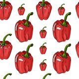 Seamless pattern of red hand drawn sweet peppers. Ink and colored sketch on white background. Whole objects. Vector illustration royalty free illustration