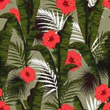 Seamless pattern, red hibiscus flowers and green palm bananas leaves on green background. Green tones Royalty Free Illustration