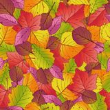 Seamless pattern with red, orange, brown, green and yellow autumn leaves. Vector illustration. stock illustration