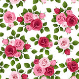 Seamless pattern with red and pink roses on white. Stock Photography