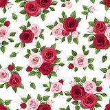 Seamless pattern with red and pink roses on white. Vector illustration. Vector seamless pattern with red and pink roses and green leaves on a white background Royalty Free Stock Photos