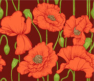 Seamless pattern of red poppies on dark background Royalty Free Stock Photography