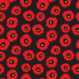 Seamless pattern of red poppies Royalty Free Stock Photography