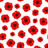 Seamless pattern with red poppies. Vector illustration. Stock Images