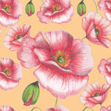Seamless pattern of red poppies Stock Photos