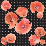 Seamless Pattern With Red Poppy. Royalty Free Stock Image