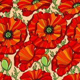 Seamless pattern with red poppy flowers. Floral background Royalty Free Stock Photo