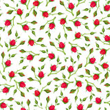 Seamless pattern with red rose buds. Vector illustration. Stock Image