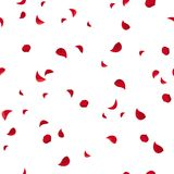 Seamless pattern with red rose petals. Vector illustration. Vector seamless pattern with red rose petals on white stock illustration