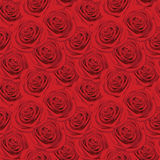 Seamless pattern with red roses Royalty Free Stock Photography