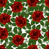 Seamless pattern with red roses. Beautiful realistic flowers with leaves. Photorealixtic rose bud, clean high detailed royalty free stock images