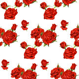 Seamless pattern of red roses on a white backgroun Stock Photography