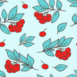 Seamless pattern with red rowanberry Stock Photos