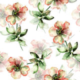 Seamless pattern with Red Summer flower Stock Photos
