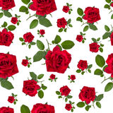 Seamless pattern red tiger rose Stock Image