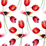 Seamless pattern with red Tulips flowers Stock Photos