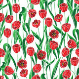 Seamless pattern with red tulips Stock Photo