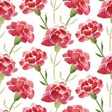 Seamless pattern of red watercolor carnations Stock Photos