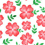 Seamless pattern with red watercolor flowers Royalty Free Stock Photos