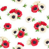 Seamless pattern with red and white anemone flowers. Vector illustration. Royalty Free Stock Photos