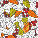 Seamless pattern red wild berries branch leaves retro background Royalty Free Stock Photography