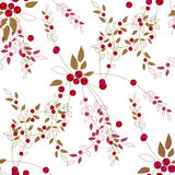 Seamless pattern red wild berries branch texture background Stock Image