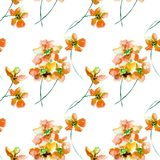Seamless pattern with red wild flowers. Watercolor illustration Royalty Free Stock Images
