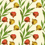 Seamless pattern with red and yellow tulips flowers Royalty Free Stock Images