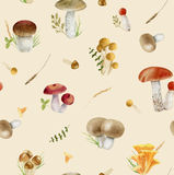 Seamless pattern repeated tile of watercolor mushrooms. Seamless pattern repeated tile of hand painted watercolor mushrooms on beige background Stock Images