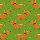 Seamless pattern with repeating dog on green grass background Stock Photo