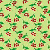 Seamless pattern with ripe berries Stock Photos