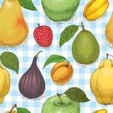 Seamless Pattern with Ripe Fruits Mix. Seamless Pattern with Fruit Mix on a Light Blue Plaid Background Stock Photos