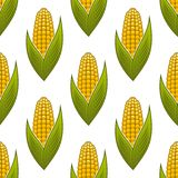 Seamless pattern of ripe golden corn on the cob. With green leaves for background design Royalty Free Stock Photography