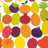Seamless pattern ripe juicy fruit Pear Mangosteen tangerine pineapple papaya persimmon pomegranate lime apricot plum dragon fruit. Figs mango peach lemon lychee Stock Image