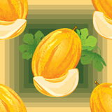 Seamless pattern of ripe melon Royalty Free Stock Images