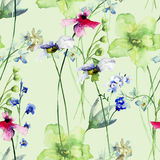 Seamless pattern with Romantic summer flowers Stock Image