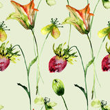 Seamless pattern with Romantic summer flowers Royalty Free Stock Photography