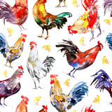 Seamless pattern with rooster and chicken. Sketch.Symbol of the new year 2017.Watercolor hand drawn illustration.White background Stock Photos