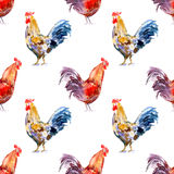 Seamless pattern with rooster. Sketch.Symbol of the new year 2017.Watercolor hand drawn illustration.White background Royalty Free Stock Images