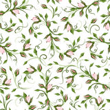 Seamless pattern with rose buds. Stock Image